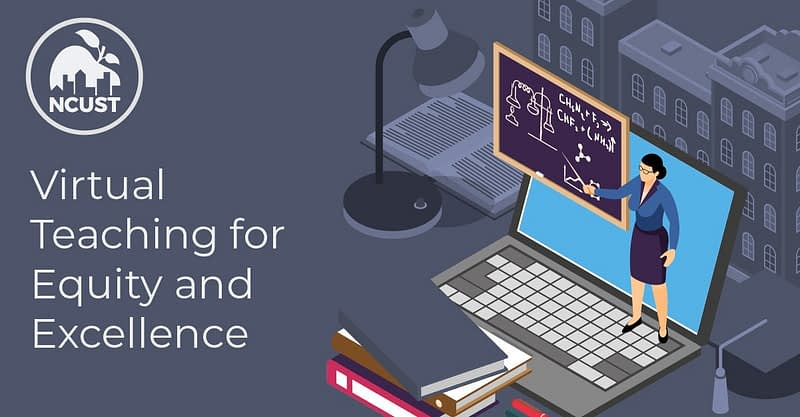 Virtual Teaching for Equity and Excellence